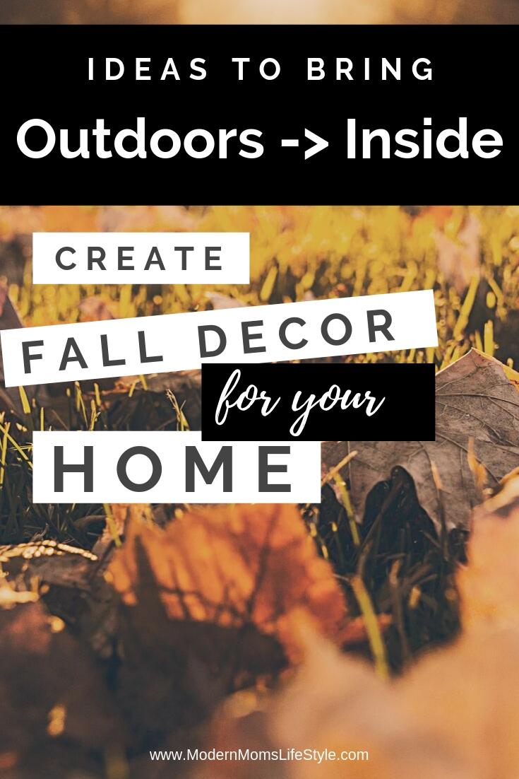 Cozy Rustic Home Decor Ideas For The Fall That Are Budget